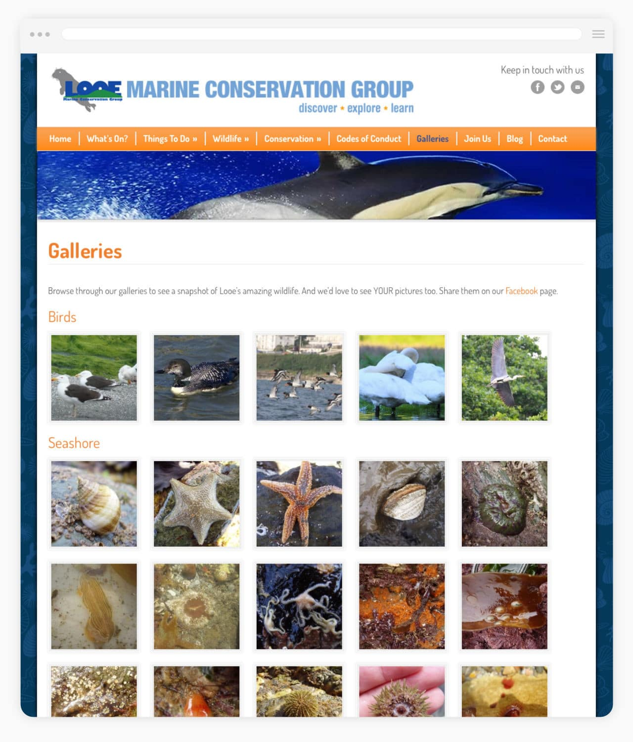 Marine Conservation Website